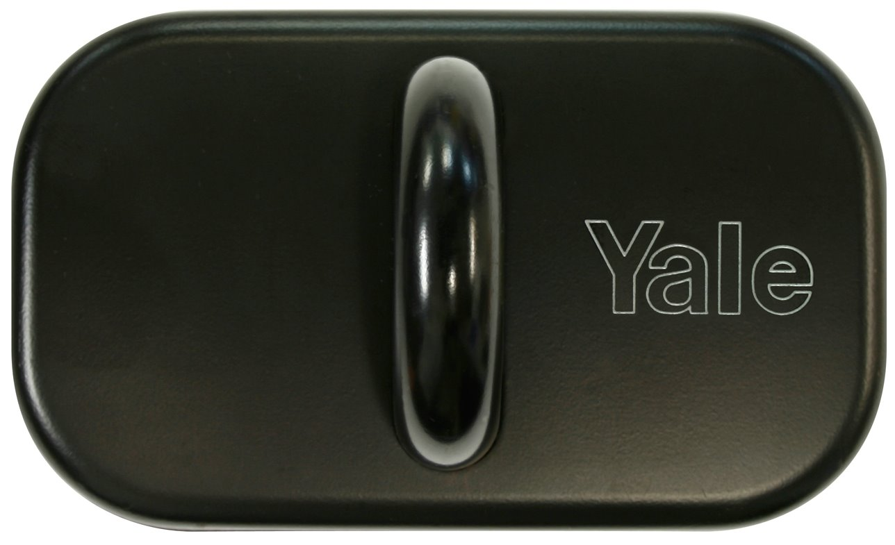 Y830/100/60/1 - Yale Steel Anchor with Concealed Fixing 100mm